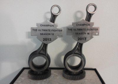 award-hd-ultimatefighter