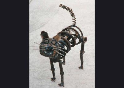 scul-cat064