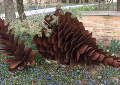Pinecone  Pinecone  6 ft wide  20166 ft wide